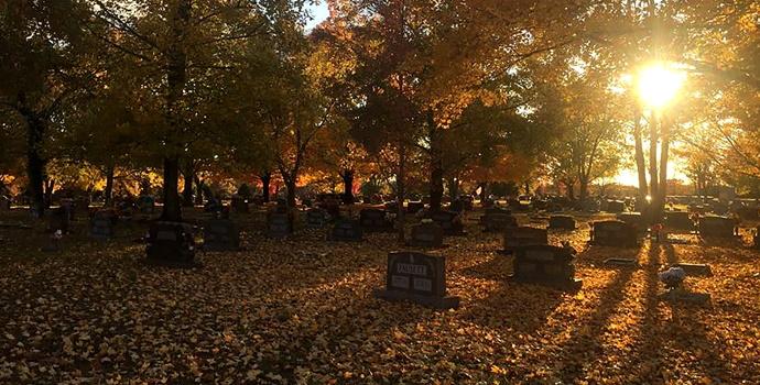 Graveyard Shadows